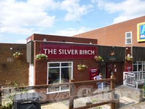 Picture of The Silver Birch