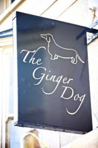Picture of The Ginger Dog