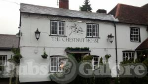 Picture of The Chestnut Horse