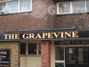 Picture of The Grapevine
