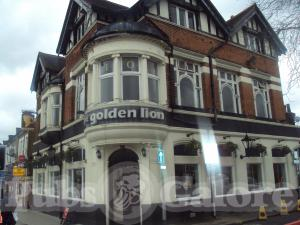 Picture of Golden Lion