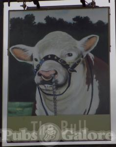 Picture of The Bull