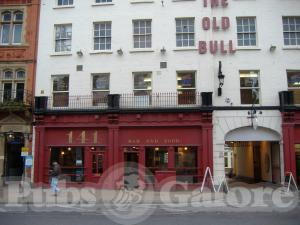 Picture of The Old Bull