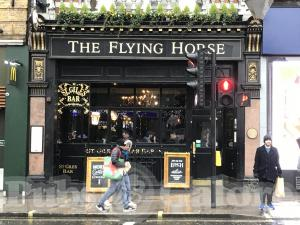 Picture of The Flying Horse