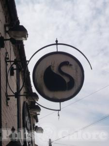 Picture of The Black Swan