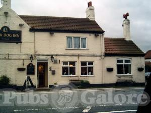 Picture of Black Dog Inn