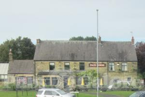 Picture of The Pack Horse
