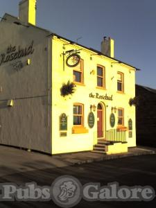 Picture of Rose Bud Inn