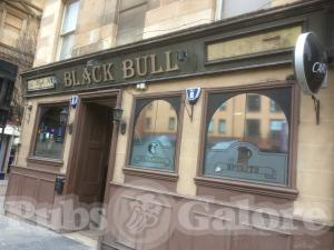 Picture of Black Bull