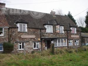 Picture of Druid Arms