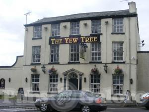 Picture of The Yew Tree