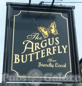 Picture of The Argus Butterfly