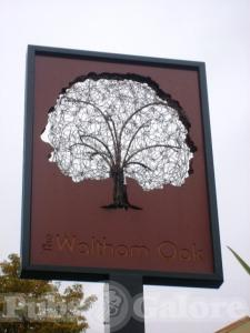 Picture of The Waltham Oak