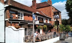 Picture of Turks Head