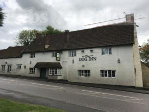 Picture of The Dog Inn