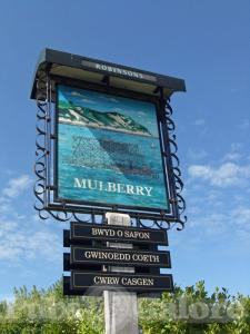 Picture of The Mulberry