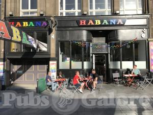 Picture of Habana