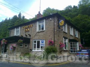 Picture of The Gower Inn