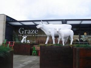 Picture of Graze