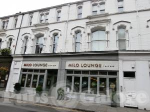 Picture of Milo Lounge