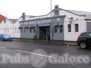 Picture of The White Elephant