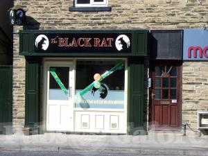Picture of The Black Rat