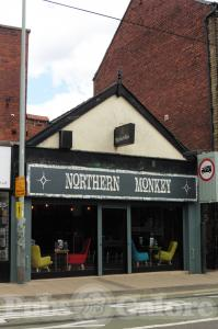 Picture of Northern Monkey