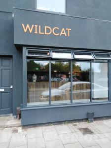 Picture of Wildcat